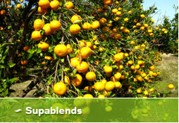 Supablends - Liquid Fertilisers